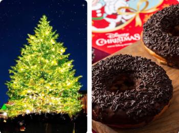 【2019年クリスマスデートスポット特集】- カップルで楽しめるイルミネーションスポットやテーマパークなどの限定グルメ情報まとめ