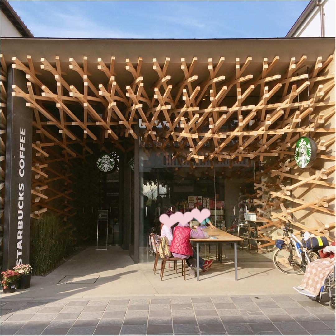【 日本の珍しいスタバに行きたい♪ 】 芸術的な木のデザインが美しい♡ 大宰府天満宮のスターバックス♡♡_1