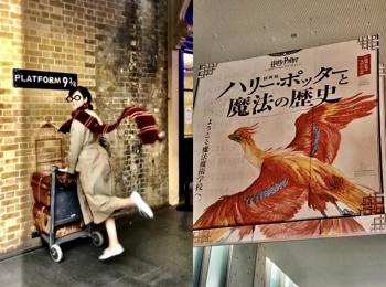 東京は12月から!神戸で先行開催中の「ハリー・ポッターと魔法の歴史展」に行ってきました!