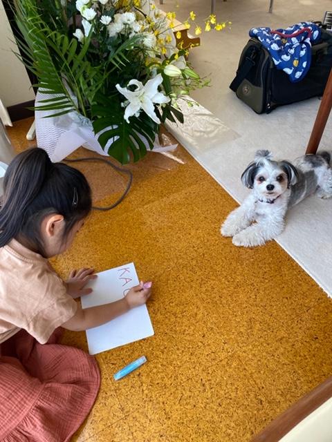 女の子に絵を描いてもらっている太郎くん