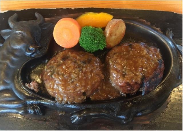 静岡に行ったら行ってみたい!食べてみたい!大人気チェーン、さわやかのハンバーグ。_4