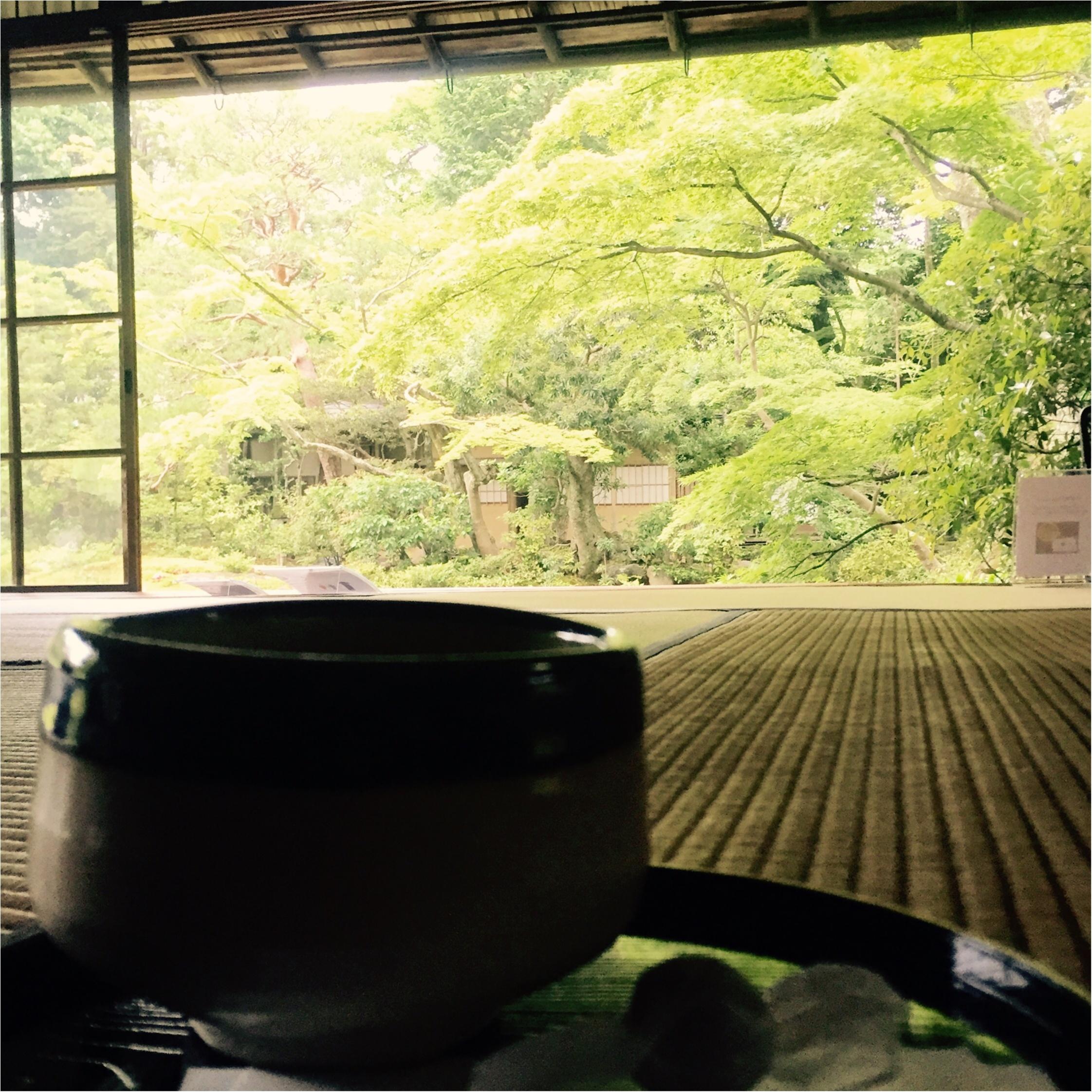 【京都】無鄰菴で新緑を眺めながら抹茶を飲みませんか?*_4