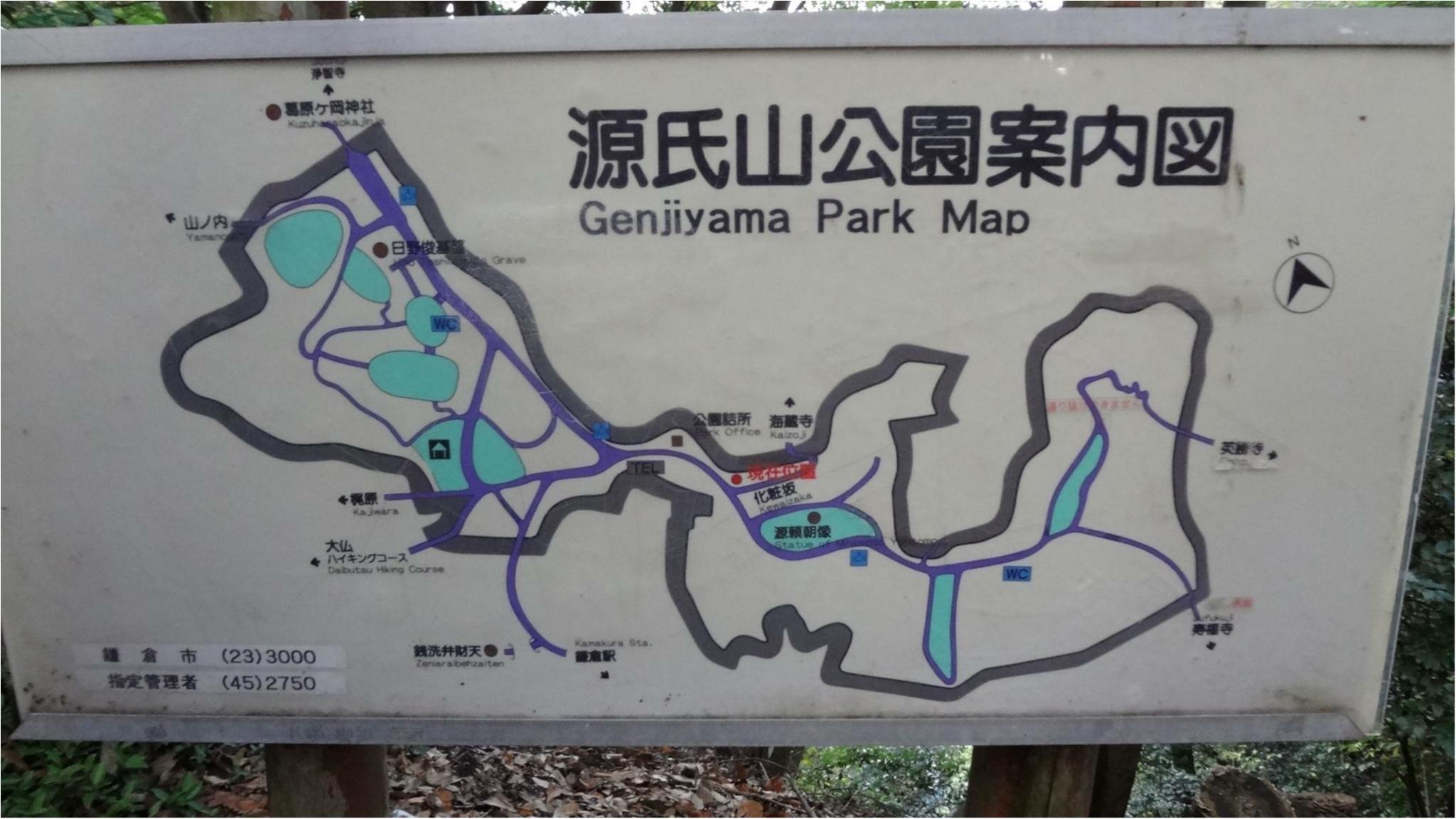 鎌倉にも紅葉の季節がやってきた♡11/20時点で見頃のオススメ紅葉スポットをご紹介✨≪samenyan≫_2