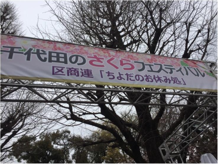 【4/6まで】都内でも七分咲き♪♪*千代田のさくらフェスティバル*に行ってきました✨✨_8