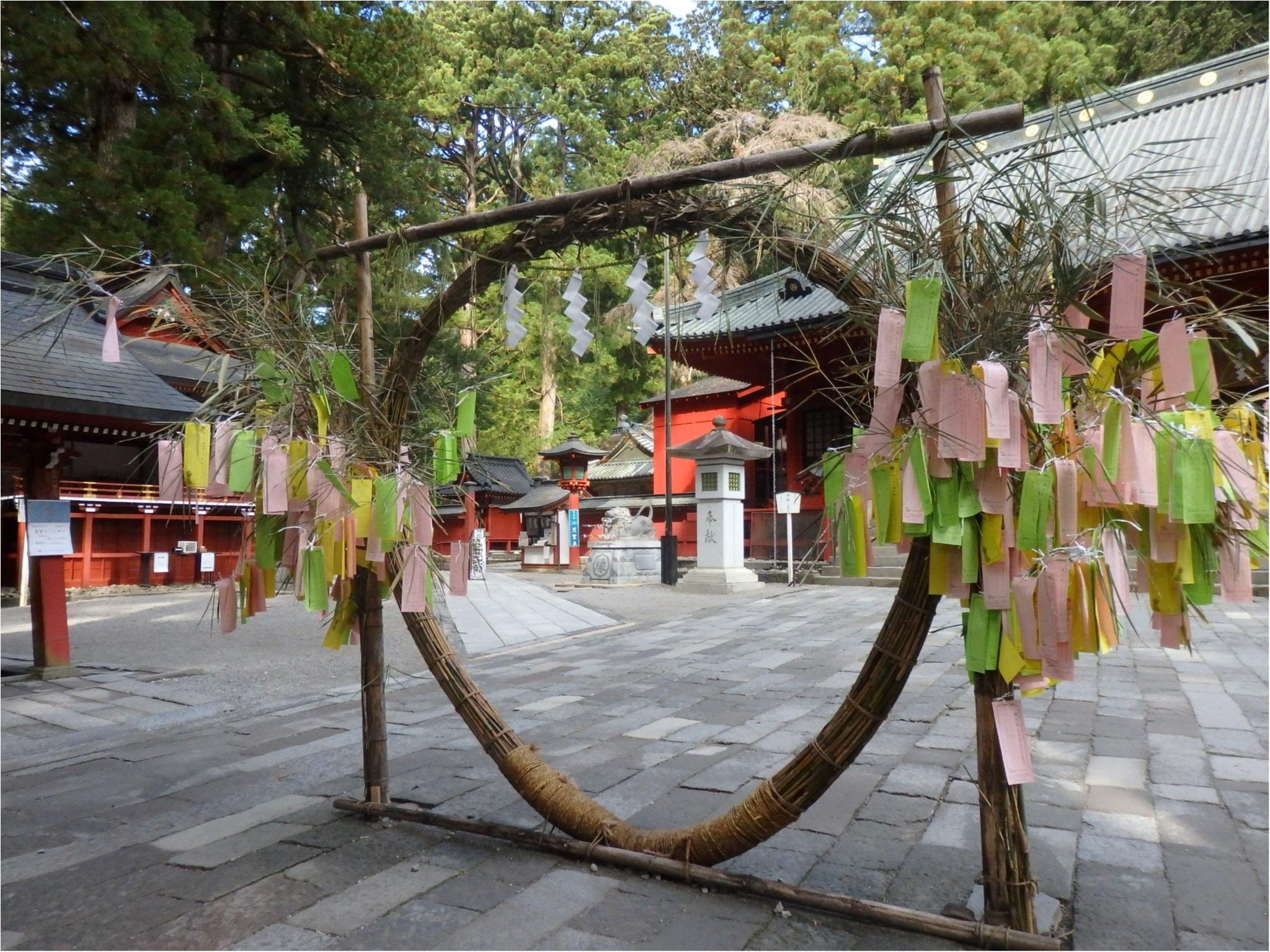 【知らなかった!】日本一楽しめる神社へ潜入してみた_8