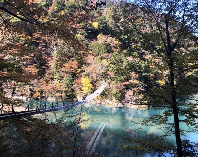 【#静岡】《夢の吊り橋×秋・紅葉》美しすぎるミルキーブルーの湖と紅葉のコントラストにうっとり♡湖上の吊り橋で空中散歩気分˚✧₊_5