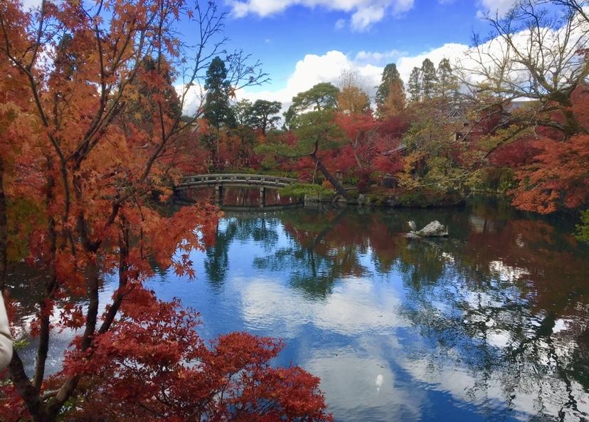 【女子旅におすすめ】京都行くなら紅葉!♡フォトジェニックな穴場スポット紹介6選♡_1