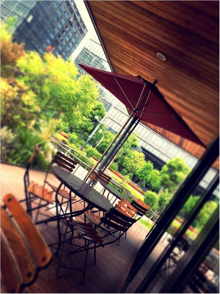オススメCafe【火曜サプライズで紹介】東京の都会でも緑に癒されて〜_6