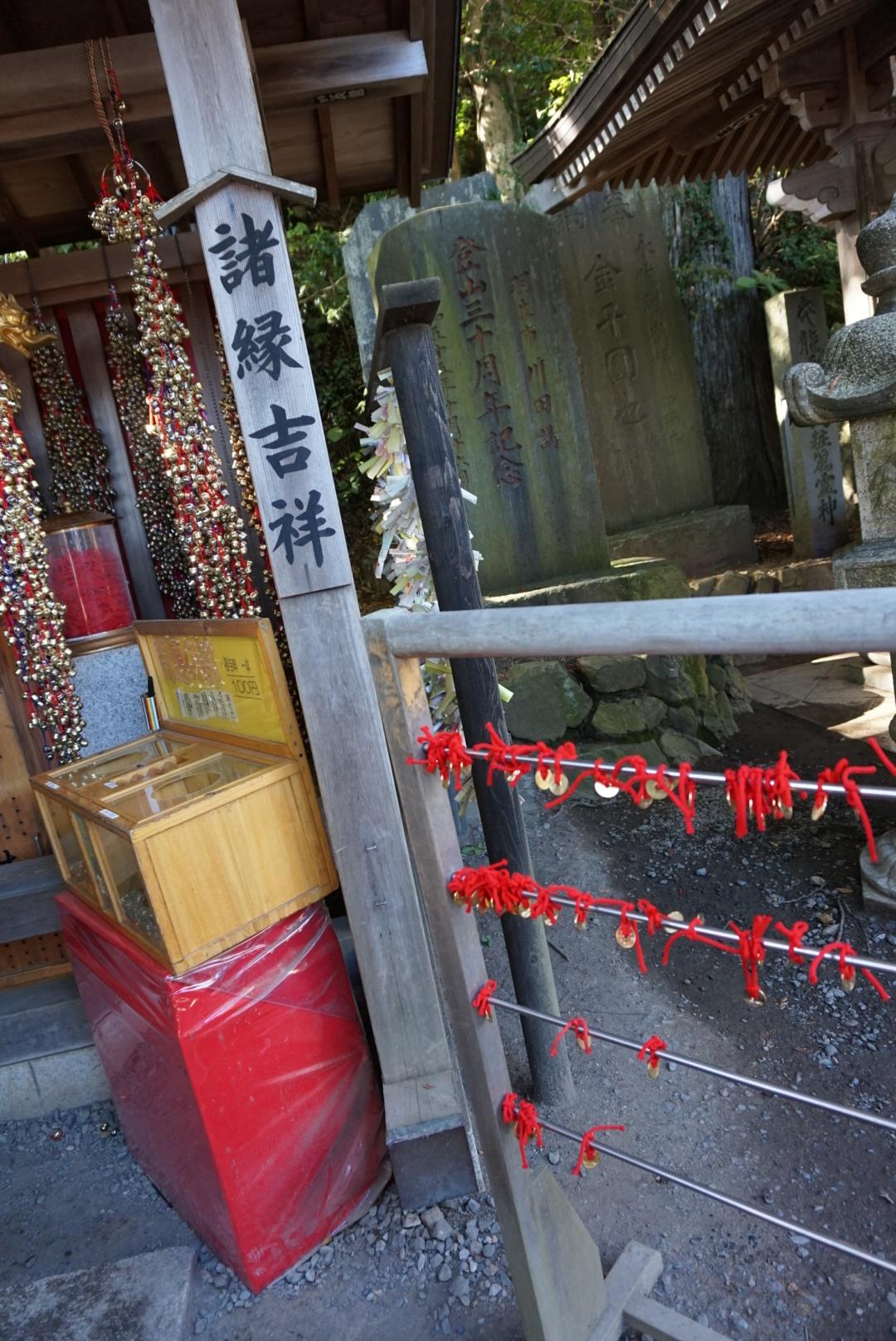【おでかけ】いよいよ紅葉シーズン♡新宿から1時間以内の紅葉スポットって? _13