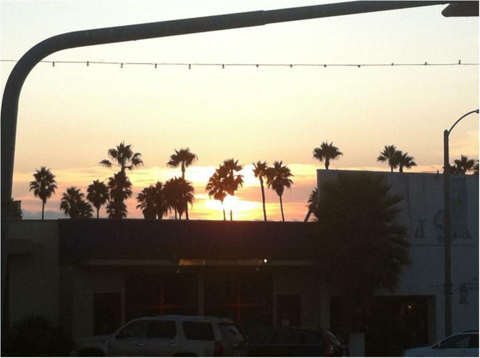 写真でも、きっと伝わるこの魅力✨朝から晩まで眺めた《*ロサンゼルスの広い空*》_8