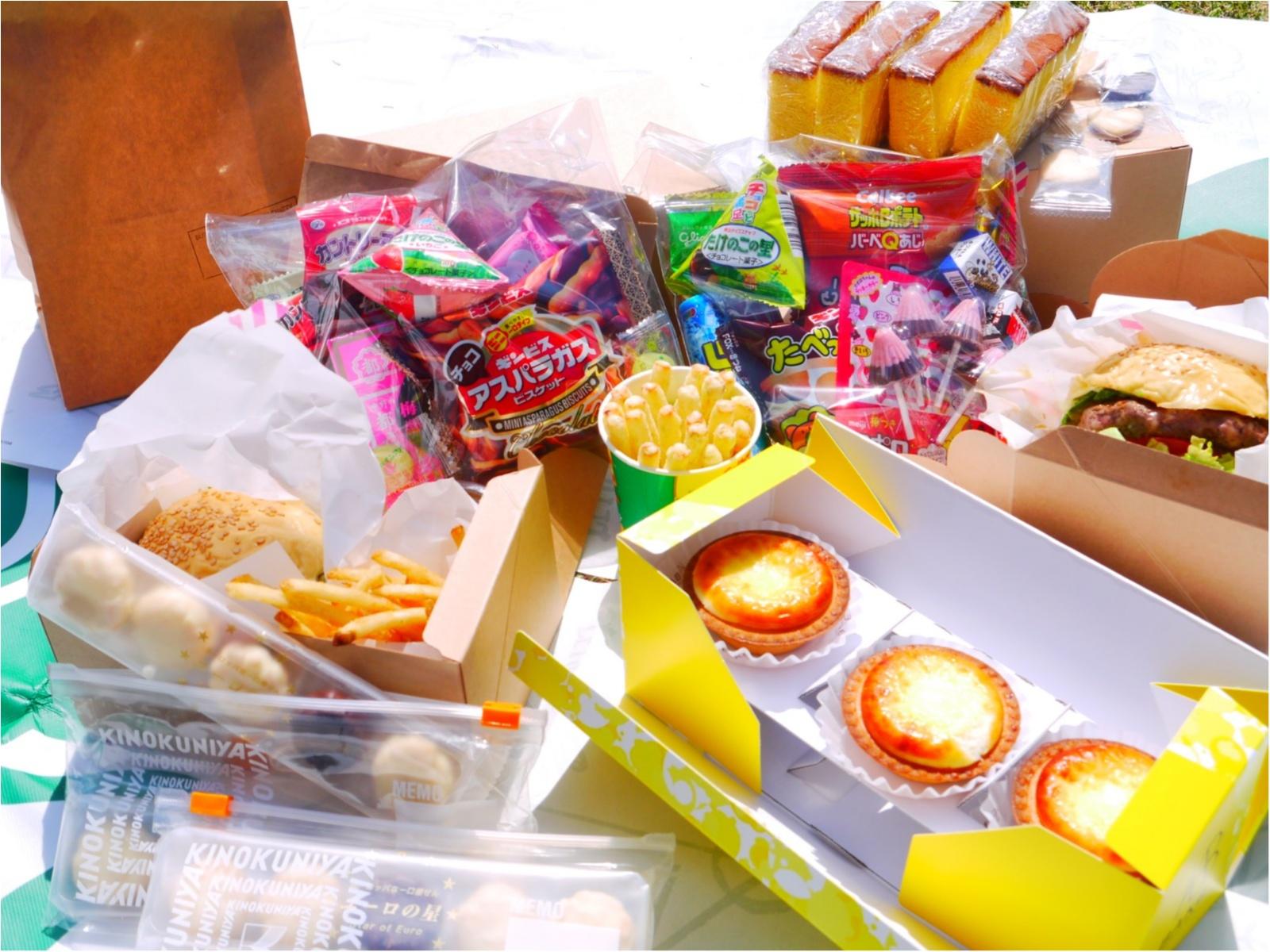 【おでかけ】春のレジャーは手軽に楽しめる『ピクニック』で決まり!GWにもおすすめです◎_1