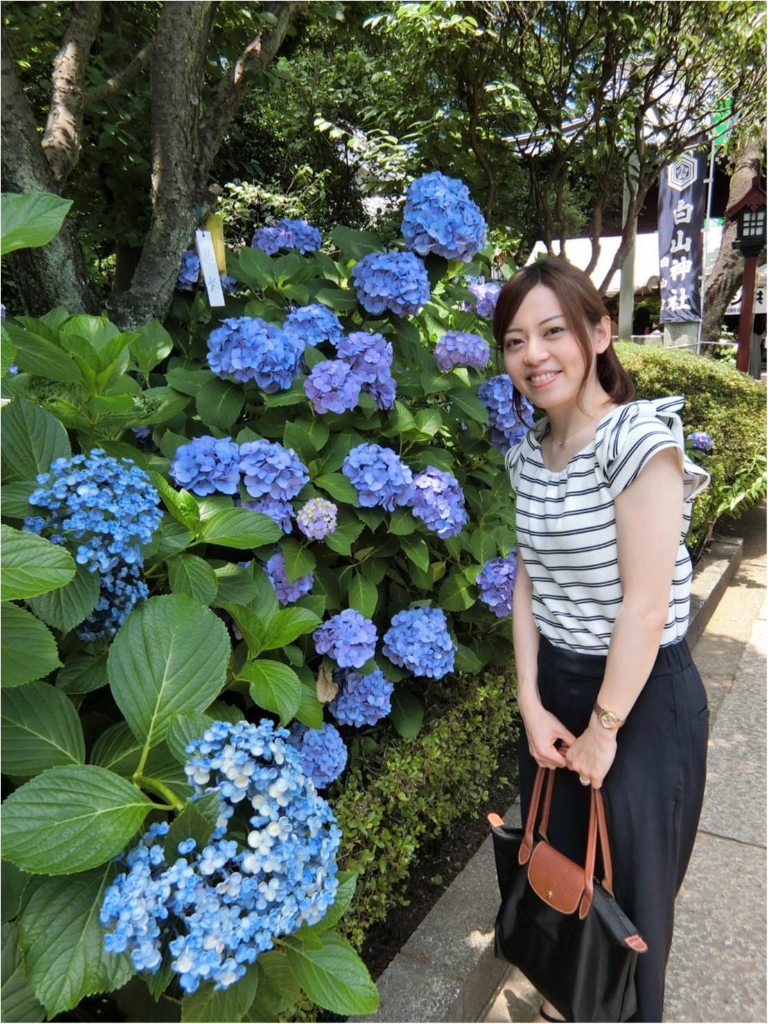 【今が見頃!】6月のおでかけは紫陽花まつりがおすすめ*写真映えするコーデのポイントも♡_8