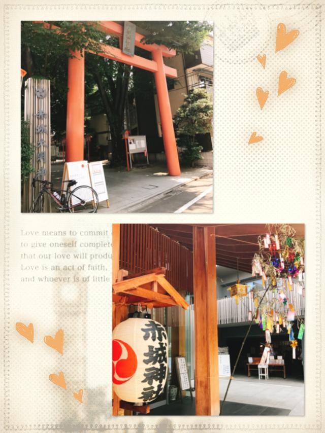 「ツール・ド・東北」に向けて…ロードバイク自主トレ!20〜30キロで行けた♡神社・お寺を全部見せ☻【#モアチャレ さえ】_1_1