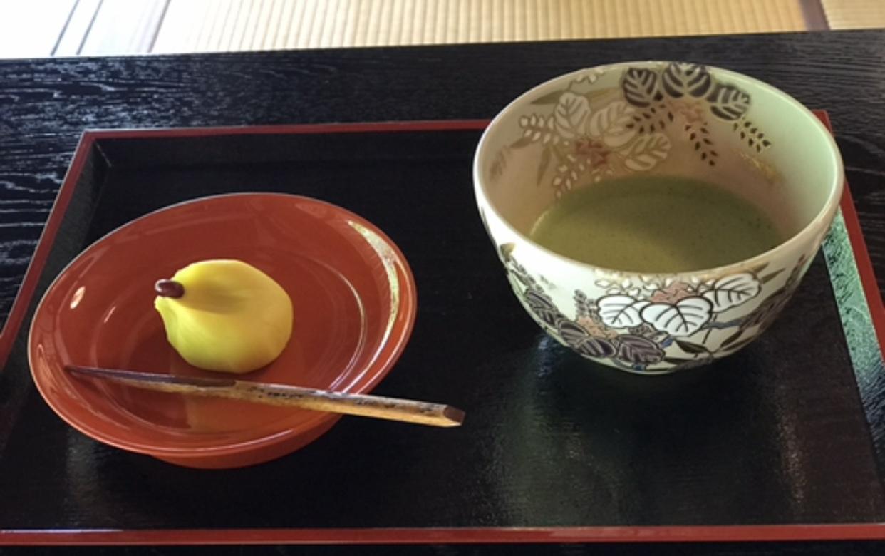 【デートにも女子旅にもおすすめ】 白いあじさい畑×静かな茶室でのティータイム _9
