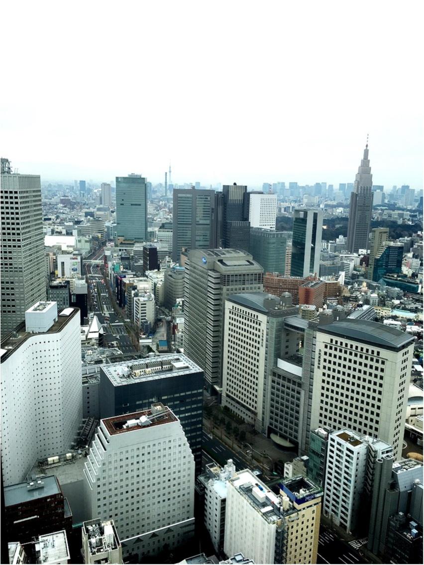 食べ放題もある⁉︎パークハイアット東京でアフタヌーンティー♡_3