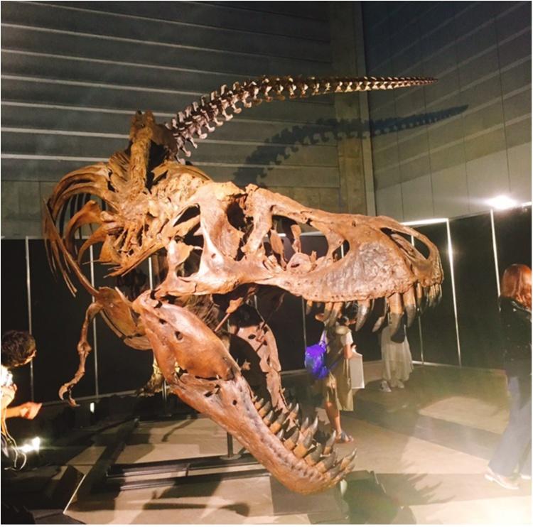 【9/3まで】大人も子供も楽しめる!!大迫力《横浜恐竜展2017》で動く恐竜の森を体験♪_8