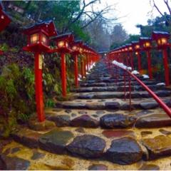 京都一人旅♥
