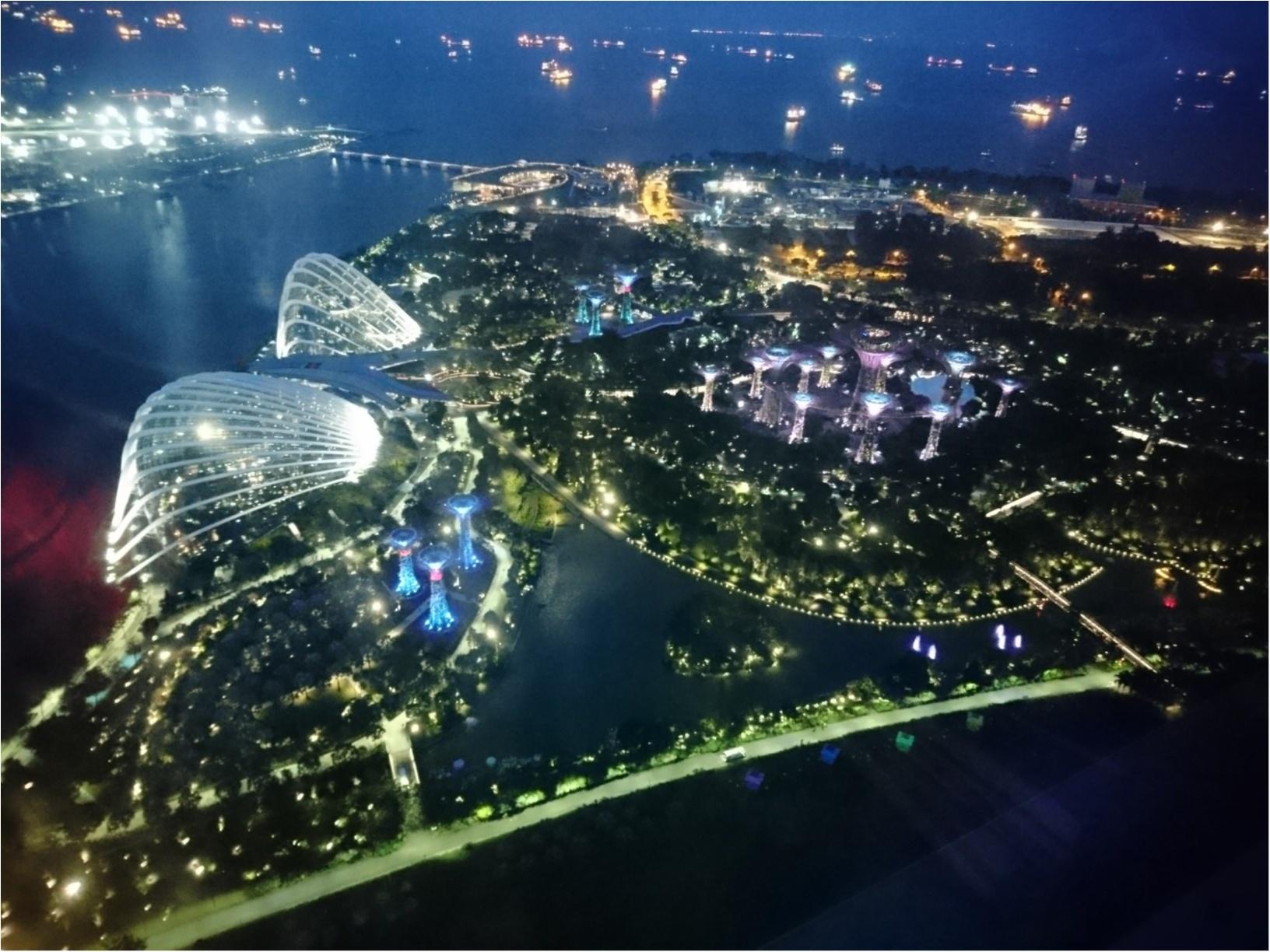 シンガポール女子旅特集 - 人気のマリーナベイ・サンズなどインスタ映えスポット、おいしいグルメがいっぱい♪_53