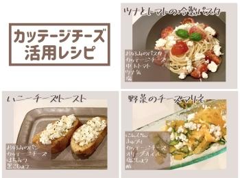 【レシピ】カッテージチーズでオシャレシピ3選