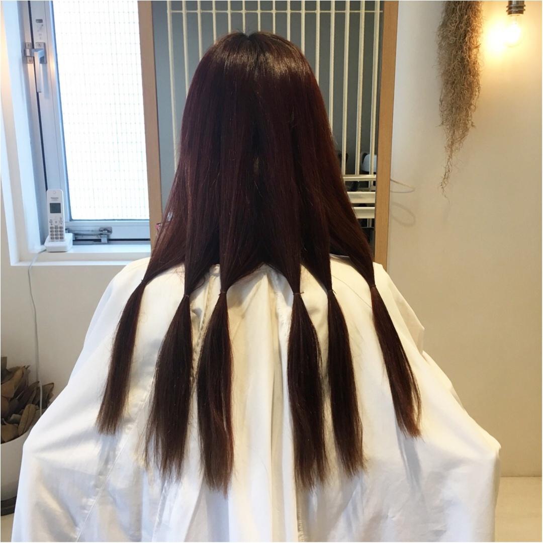 【ヘアドネーションとは?】私も体験した15㎝~でもできる髪の毛の寄付_2