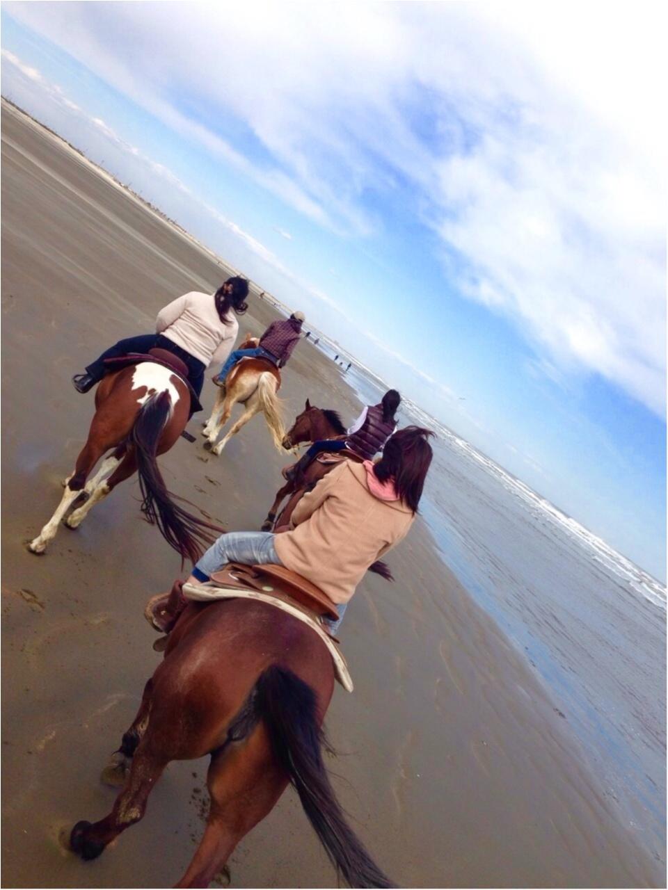 馬にアモーレ!!ステキな週末★都内で乗馬したことありますか?\(//∇//)\_1