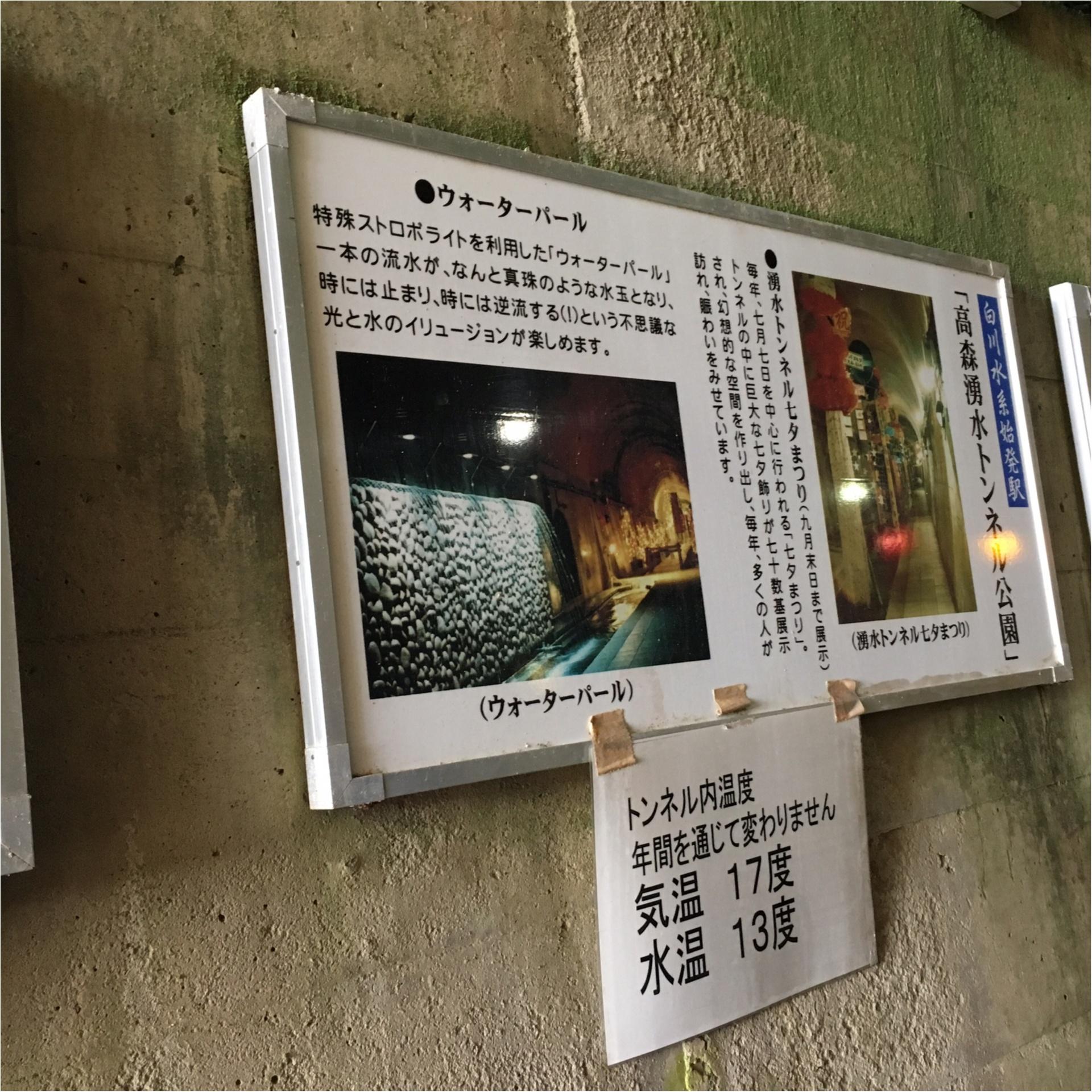 【動画で紹介!】熊本 阿蘇の「高森湧水トンネル」は幻想的なトンネルでデートにもオススメなんです!【#モアチャレ 熊本の魅力発信!】_2