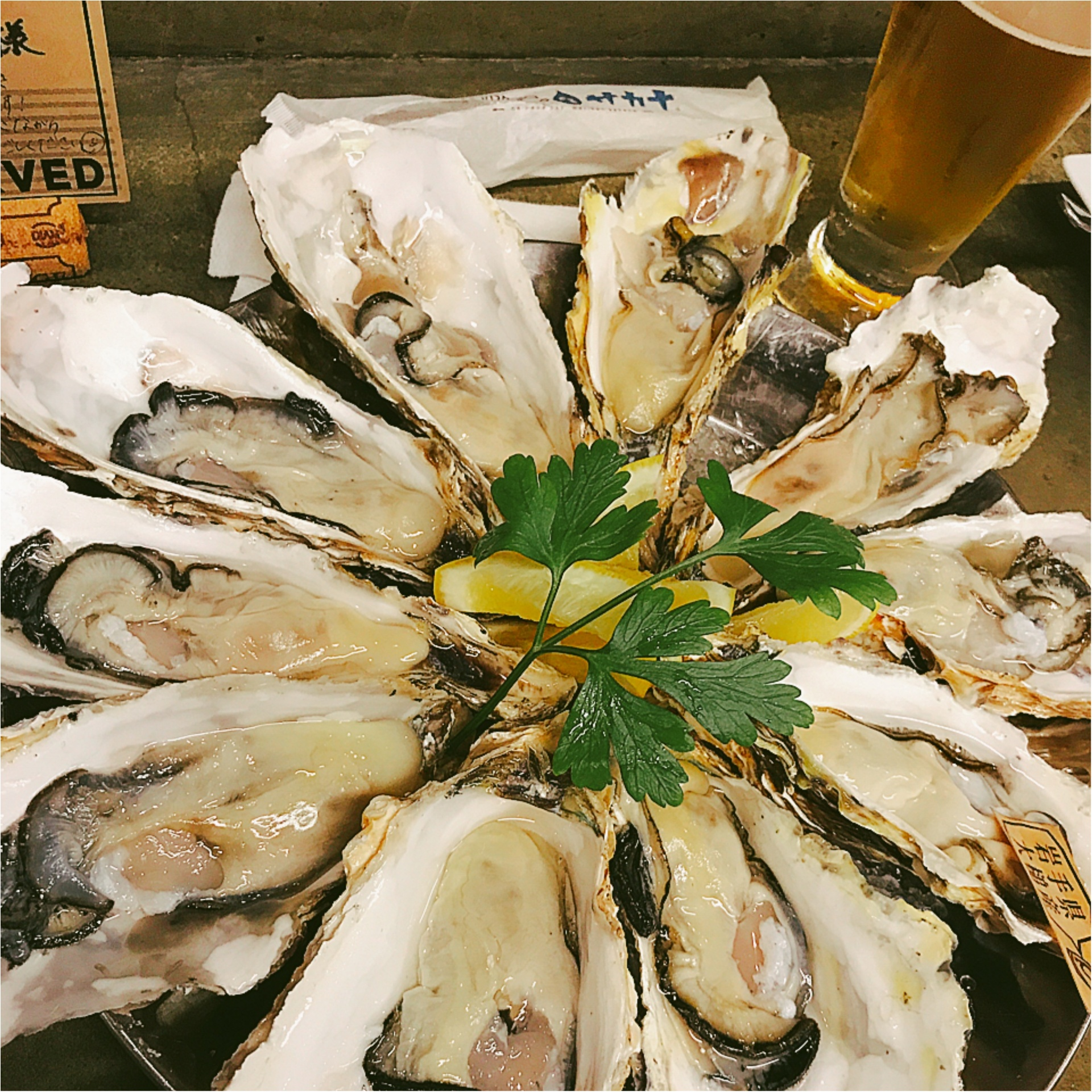 ★『R』の付く月到来!あの生牡蠣がなんと○○円で食べられてしまうお店があるんです!★_1