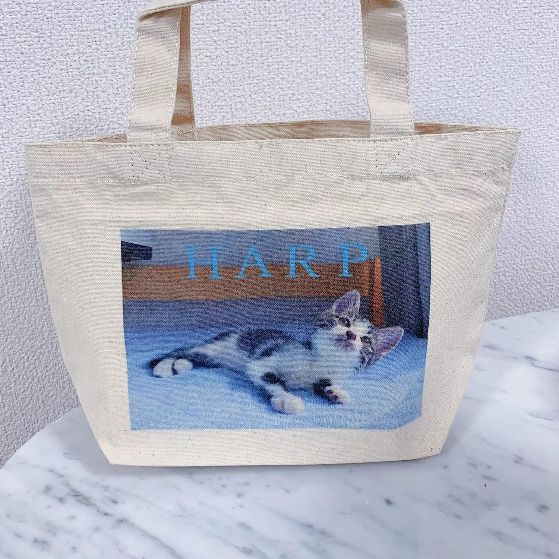 【働く女性のエコバッグまとめ】人気ブランドのおしゃれなバッグも♡ MOREインフルエンサーズのMyバッグ特集_28