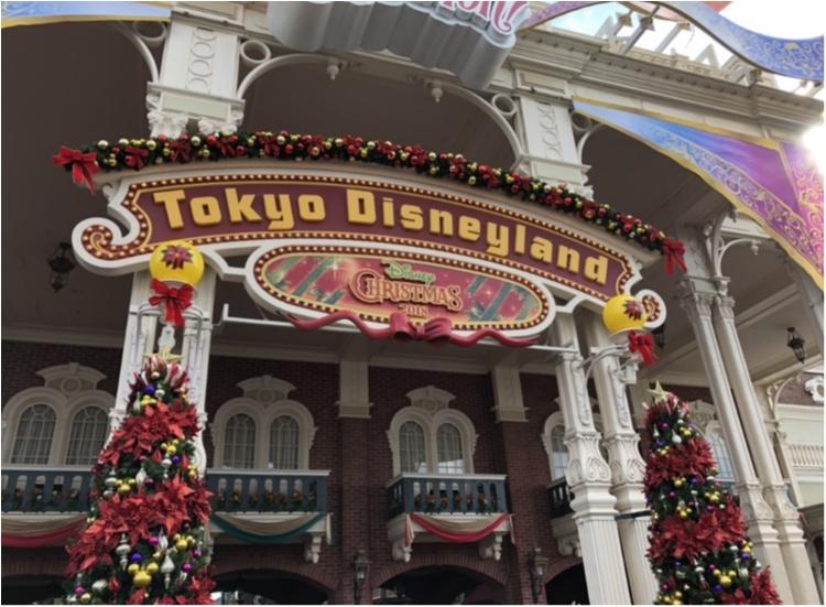 TDL35周年!【ディズニー・クリスマス】行ってきました♡_1