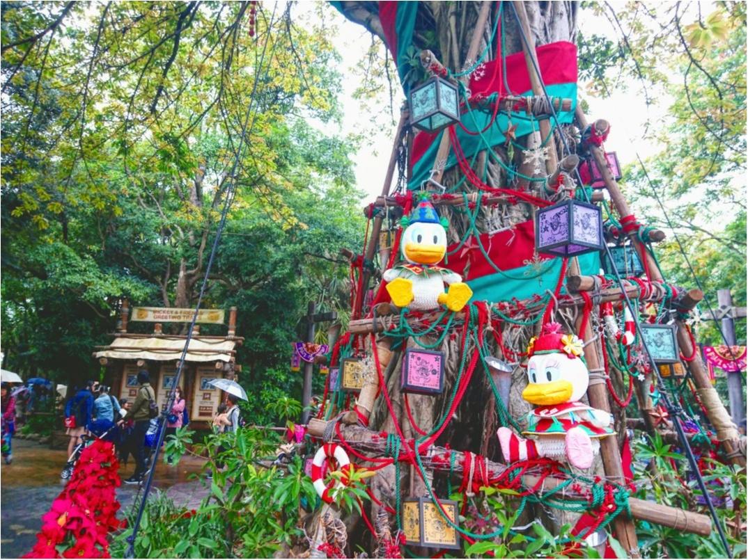 【イベント】11月8日(水)から スタート!東京ディズニーシー『クリスマス・ウィッシュ』に行ってきました *.゜_8