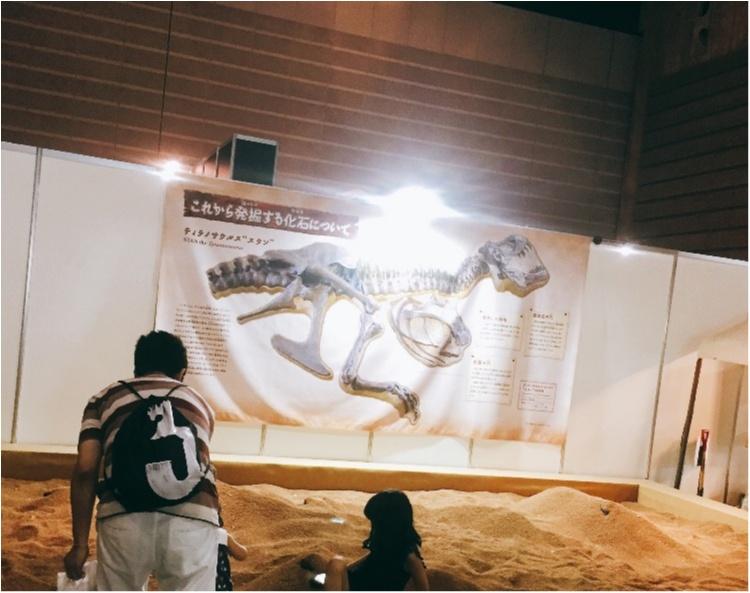 【9/3まで】大人も子供も楽しめる!!大迫力《横浜恐竜展2017》で動く恐竜の森を体験♪_15