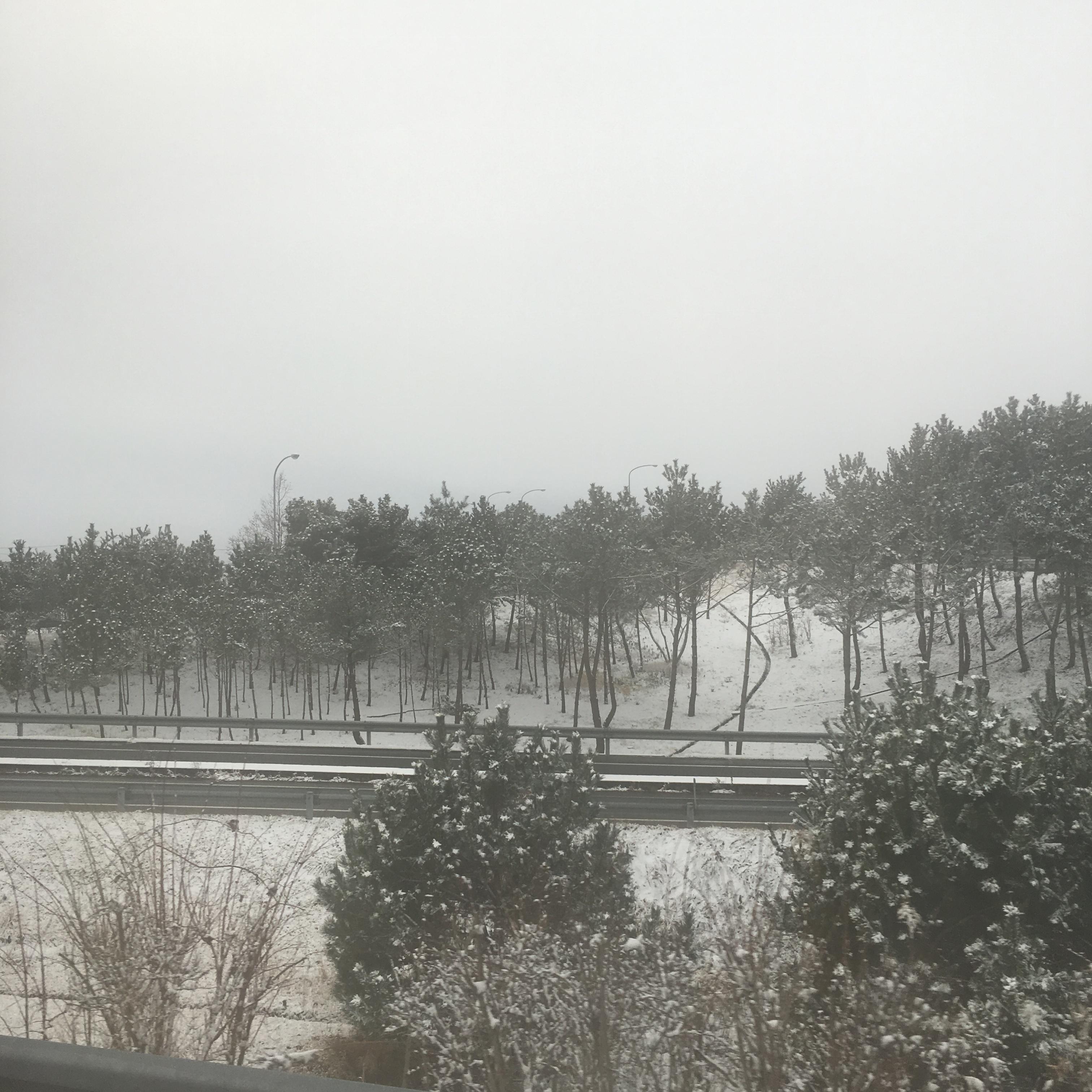 みやぎ県南浜街道ツアー♡_2