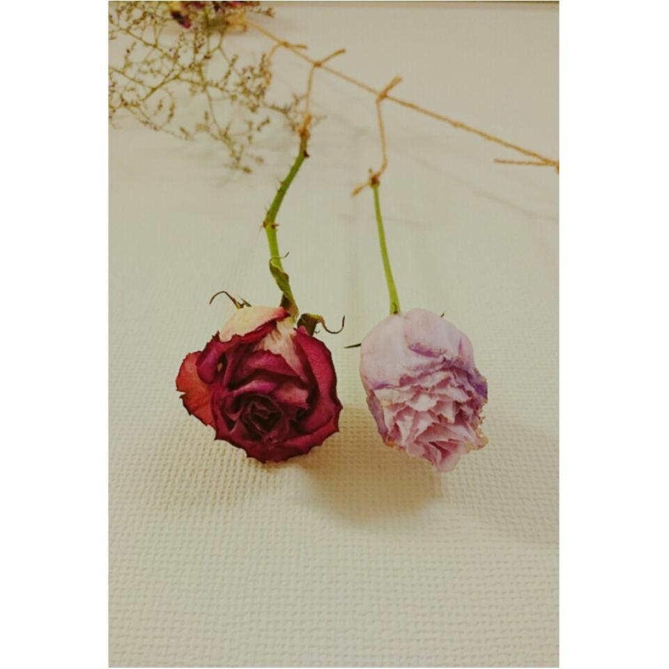 《部屋の中から女度を上げる》ドライフラワーでお花を何度も愉しもう♡_9