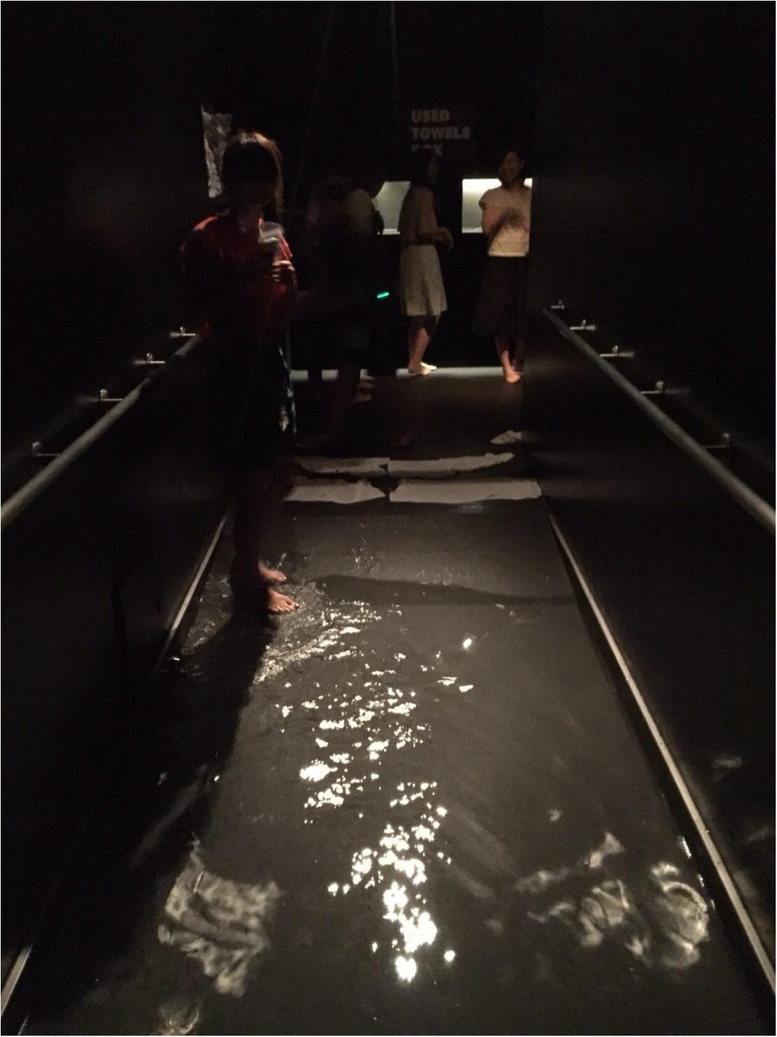 超体感・大型アトラクション‼️場内で湧き上がる大歓声が物語るデジタルアートの世界へ♬_2