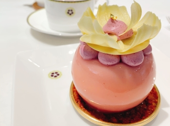 【おすすめカフェ】有名ショコラティエの《花ひらくケーキ》が美しく美味しすぎる♡