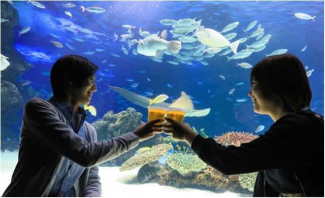 お魚や夜景を愛でながら、はい乾杯! 『サンシャイン水族館』と『SKY CIRCUS サンシャイン 60 展望台』に、ビアガーデンOPEN★_1