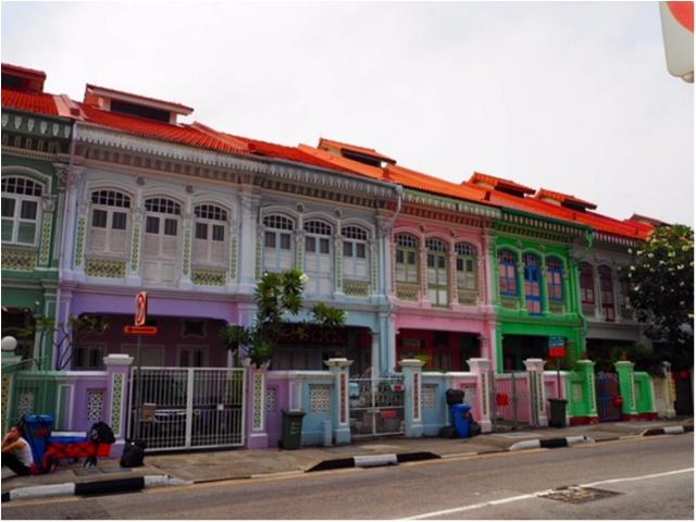 シンガポール女子旅特集 - 人気のマリーナベイ・サンズなどインスタ映えスポット、おいしいグルメがいっぱい♪_24