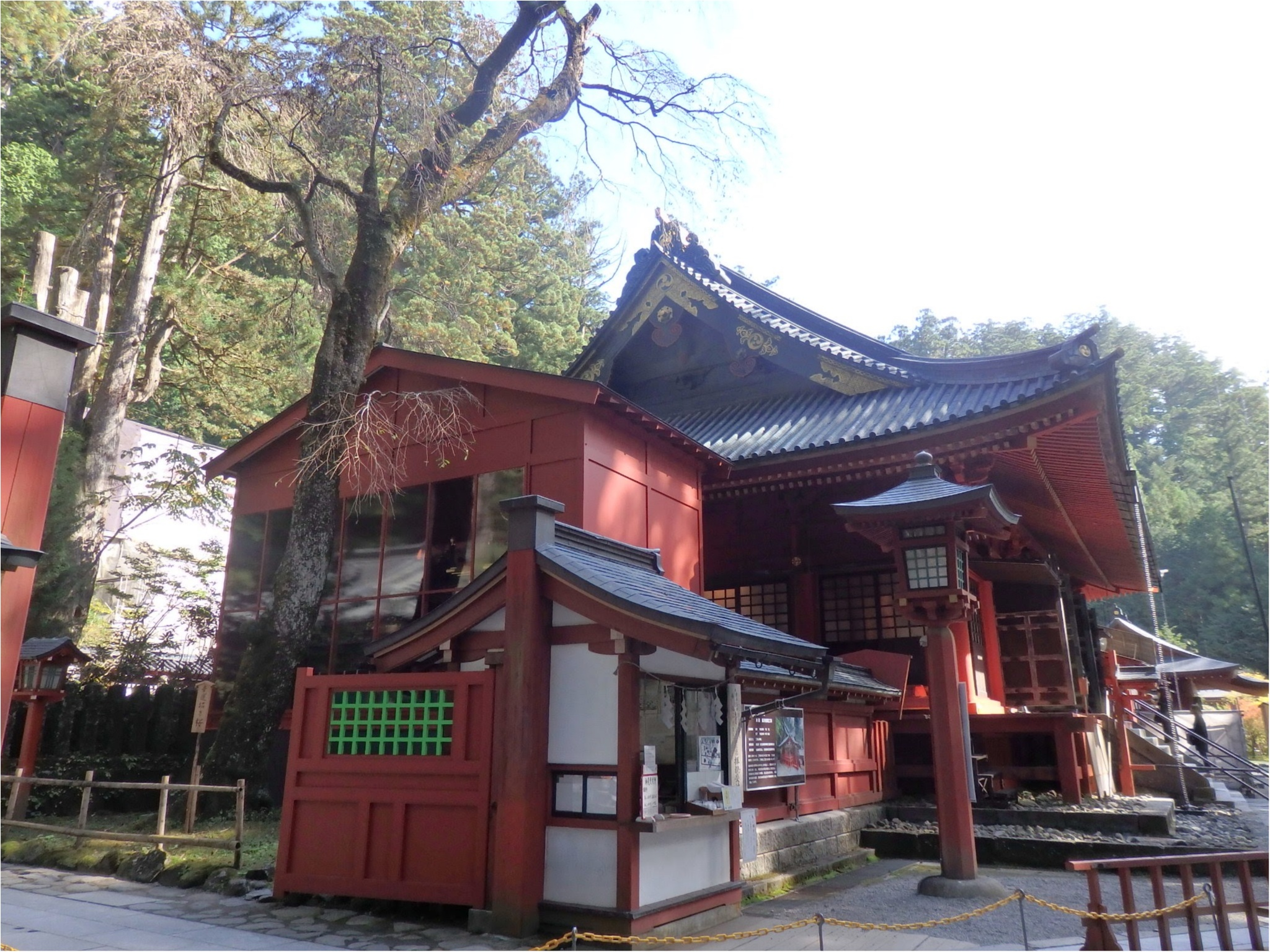 【知らなかった!】日本一楽しめる神社へ潜入してみた_19