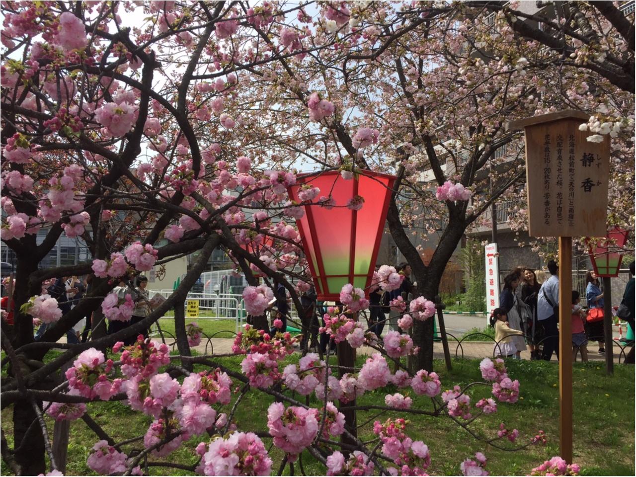 snidel ピンクフラワーBIGトートを持って、春のおでかけ♪_3