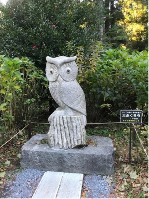 【パワースポット】栃木県の鷲子山神社へ運気アップに行ってきました♪《メディアで話題のフクロウ神社》_7_6