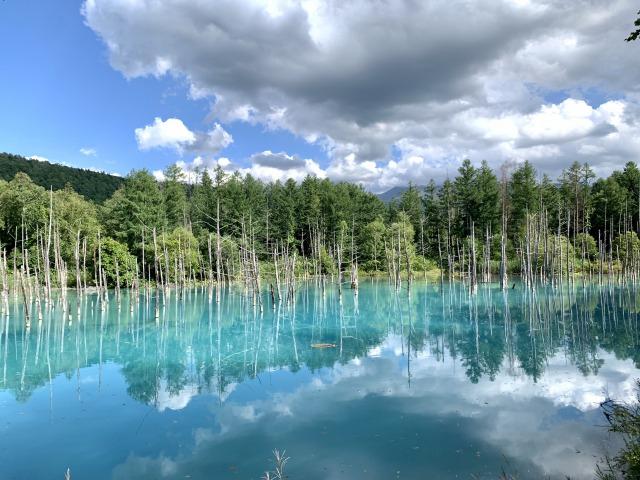 【女子旅におすすめ】北海道の美瑛にある『青い池』が綺麗すぎる♪一度は見たい絶景スポット_1