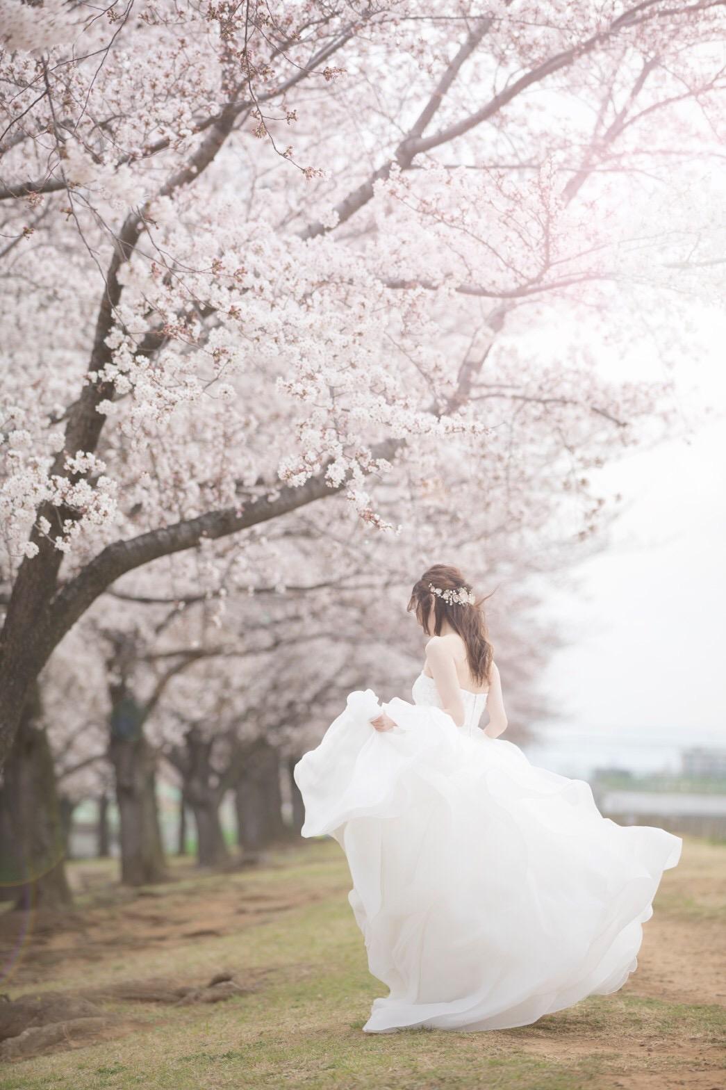 【桜ウェディング】桜満開の素敵なウェディングフォトを撮って頂きました♡_6