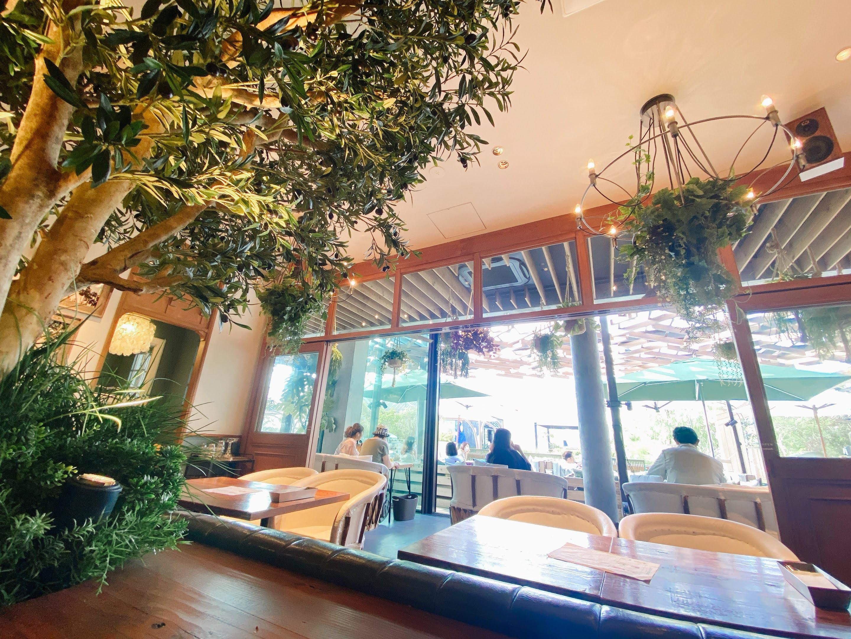 【GREEN HOUSE by MERCER BRUNCH】緑あふれるガーデンでいただく、まさに夢のシフォンケーキ(◦ˉ ˘ ˉ◦)。・゚@二子玉川_1