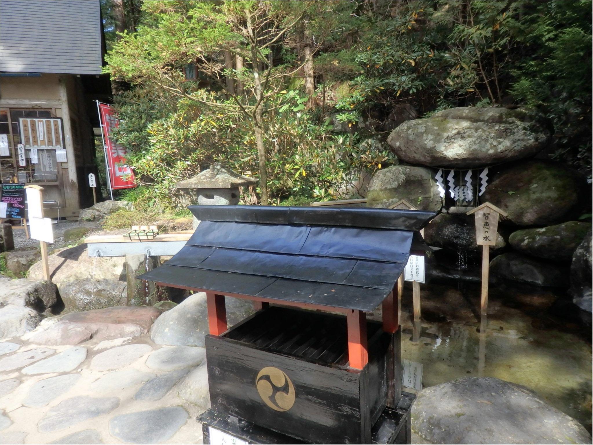 【知らなかった!】日本一楽しめる神社へ潜入してみた_44