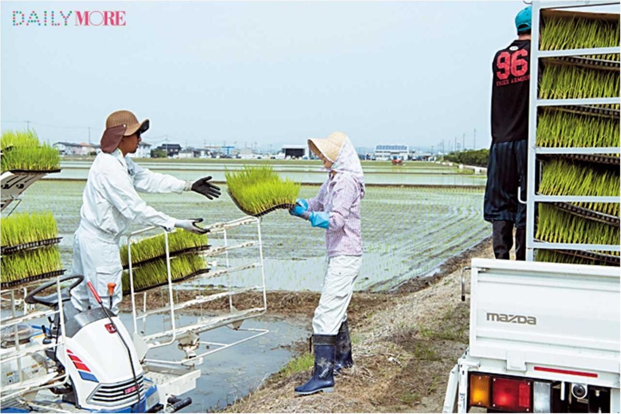 【動画もチェック】 はじめての「田植え」に密着! ひと粒のお米に込める愛情と手間ひま【#モアチャレ 農業女子チャレンジ】_2_4