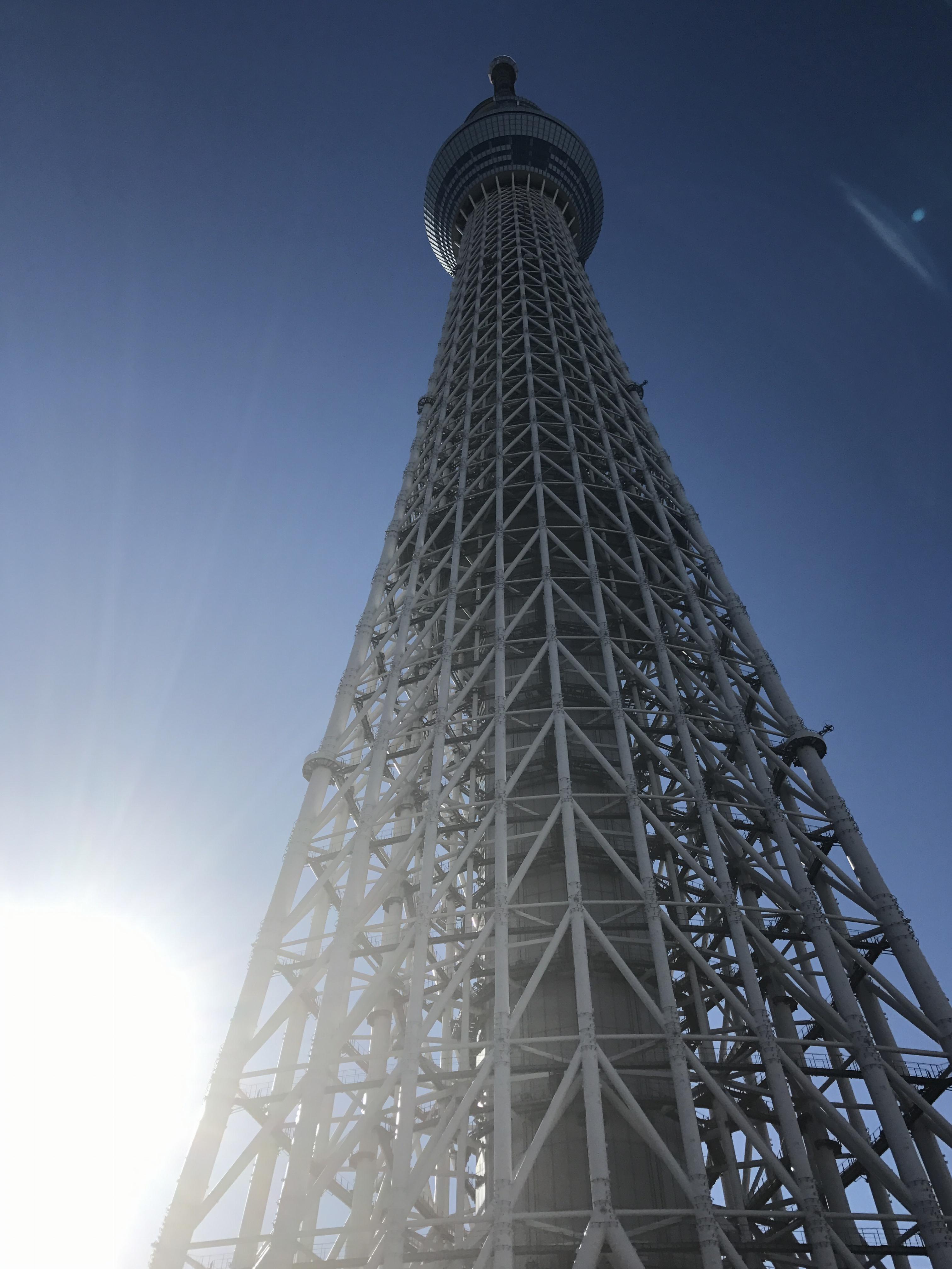 東京散歩~スカイツリー&すみだ水族館~_1