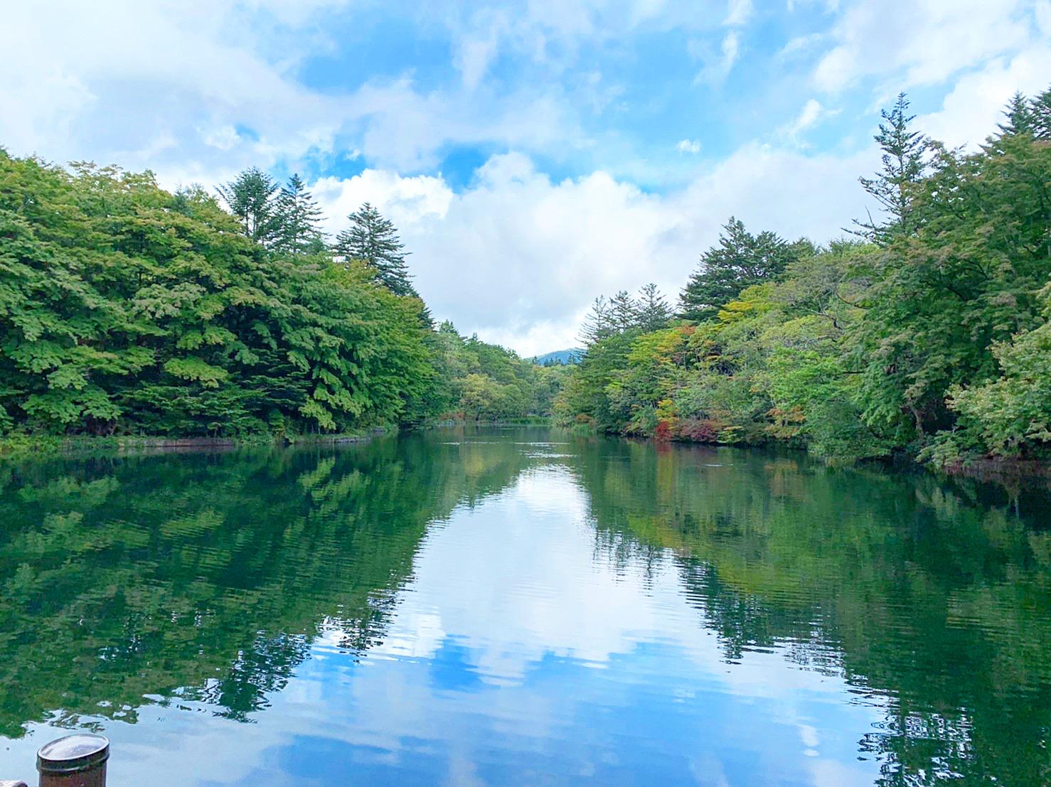 【軽井沢・日帰り紅葉旅におすすめ】リフレクションが美しい「雲場池」★_1