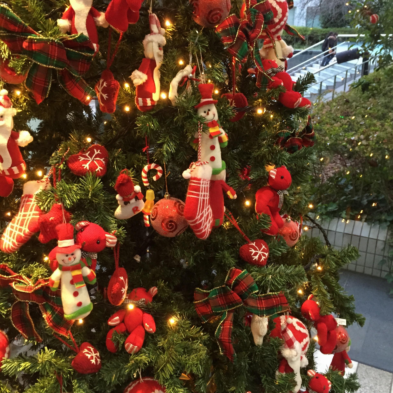 Xmas♡クリスマスツリー巡り♡_2