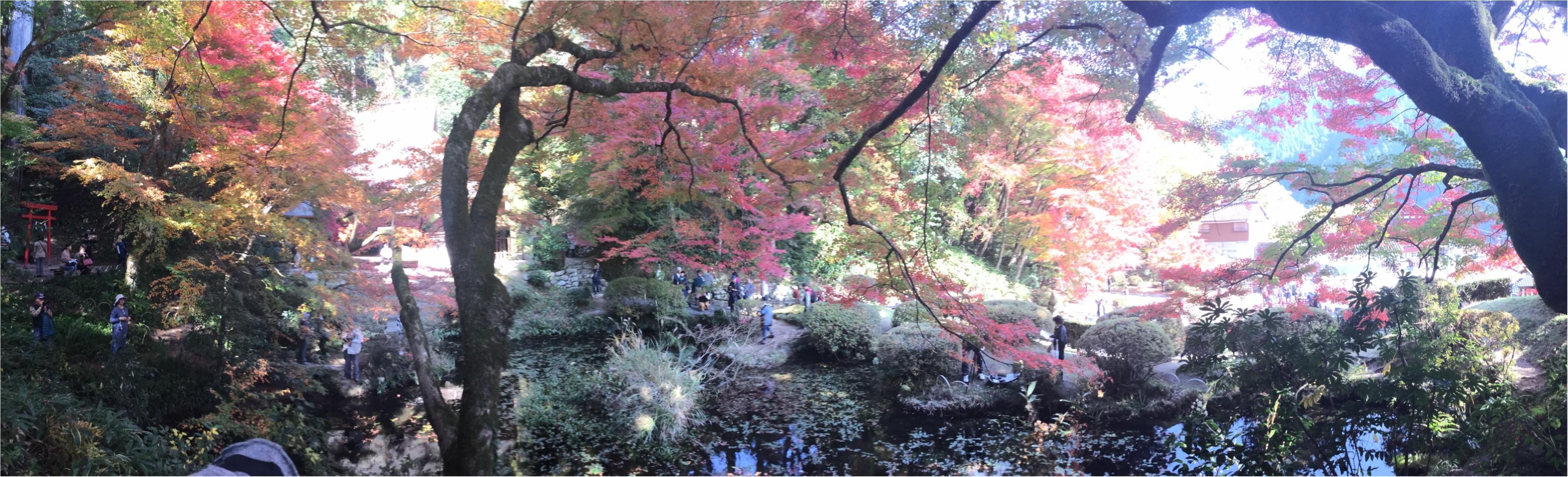 【#紅葉デート】春と秋に2週の週末しか一般公開されない!広島県を代表する紅葉スポット『吉水園』♡_1