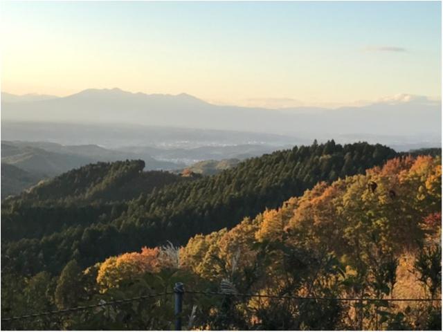 【パワースポット】栃木県の鷲子山神社へ運気アップに行ってきました♪《メディアで話題のフクロウ神社》_1